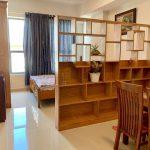 Cần cho thuê  gấp căn 1PN, nội thất cơ bản ở Chung Cư Novaland đường Hồng Hà giá 13tr